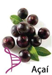 Açaí 800mg - Antioxidante - 30 cápsulas