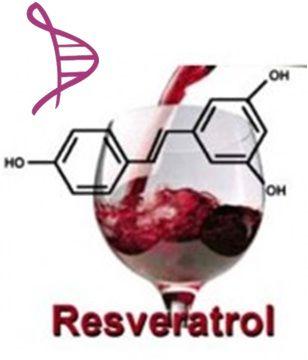 Tratamento Antioxidante - Resveratrol  20mg - 60 cápsulas. Posologia: 1 cápsulas ao dia.