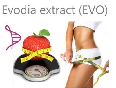 Evodia 10mg - Redutor Absorção Gordura - 60 cáps. Posologia: Tomar 01 dose, 2 vezes ao dia, 30 minutos antes das principais refeições.