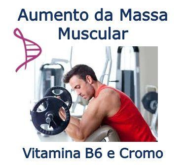 Vitamina B6 5mg e Cromo 200mcg - 30 cápsulas - Aumento da Massa Muscular. Posologia: Tomar 1 cápsula ao dia.