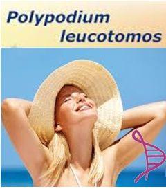 Fotoprotetor Oral com Polypodium Leucotomos 70mg, Picnogenol 70mg e Vitamina C 300mg - 90 cápsulas. Posologia: 1 cápsula 3 vezes ao dia.