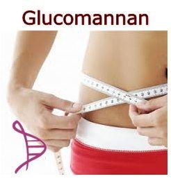 Glucomannan 500mg - 120 cápsulas. Posologia: Tomar 1 a 2 cápsulas, 2 vezes ao dia às refeições.