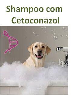 Shampoo com Cetoconazol 2% - 200ml. Modo de Usar: Aplicar sob a forma de banho 1 vez por semana ou segundo critério médico veterinário.
