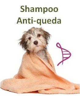 Shampoo Anti-queda com Hamamelis 5% e Jaborandi 5% - 200ml