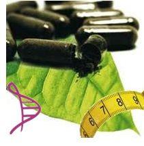 Fórmula Termogênica com Ilex paraguariensis (chá mate) 100mg, Capsicum anuum (pimenta) 3mg e Citrus aurantium 300mg – 60 cápsulas. Posologia: Tomar 1 cápsula, 2 vezes ao dia (até no máximo, às 17 horas).