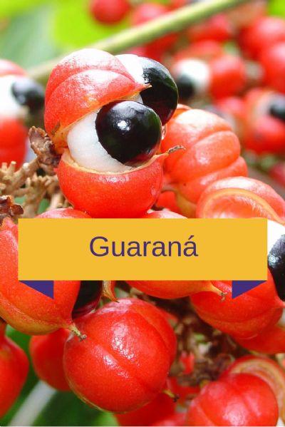 Tônico Estimulante com Guaraná  200mg, Catuaba 100mg, Marapuama  200mg e Ginseng 300mg - 120 cápsulas. Posologia: 2 cápsulas 2 vezes ao dia.