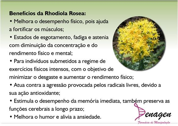 Rhodiola Rosea 500mg - Estresse - 30 cápsulas. Posologia: Tomar 01 cápsula ao dia.